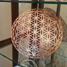 Flower of Life of Abydos -...