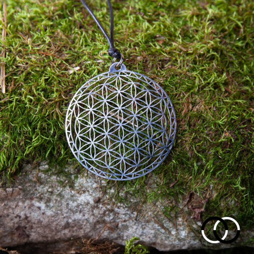 Flower of Life of Abydos...